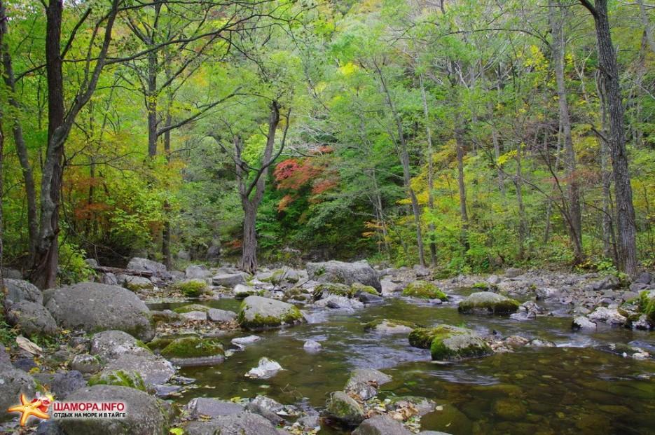 Фото 9933 | Осень и Девушка