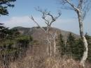 Вершина Скалистой с Ливадийского хребта
