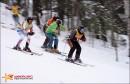 ski-cross_019