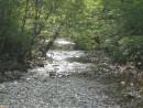 река Таежка,у с Фроловка