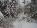 Зимнее Приморье
