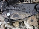 Кросавчег! :) В верхней части дисплея часов глубина, на которой взят рыб.
