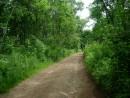 Дорога в село Ракитное.