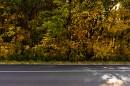 """(Дорога на мыс Астафьева. г.Находка)""""Что такое осень..."""""""