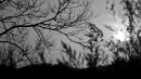 """(Сопки в черте города, вблизи остановки """"Арсеньева"""". г.Находка)На закате"""