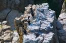 Бакланы на скалах
