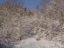 Вечером над всем центральным Приморьем прошел ранний мокрый снег. На многие сотни метров дорога оказались завалены пригнувшимися и упавшими деревьями.