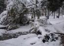 Уссурийск, первый снег,Октябрь 2007