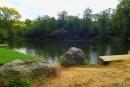 озеро...проезжая Дендрарий им. Комарова км 3