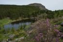 Горное озеро на горе Ольховая. Лазовский район.