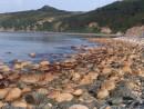 Цветные камни острова Рикорда.