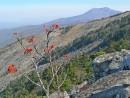 Вид с вершины в сторону горы Фалаза.