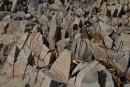 Острые камни в бухте Средняя. Морской государственный заповедник. Полуостров Гамова. Хасанский район.