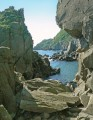 Скалистый берег острова Сибирякова.