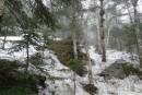 Фалаза в мае ( снег, туман и морось)