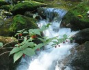 Один из водопадов горы Пидан.
