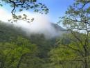 Когда рассеялся туман...   Гора Янковского.