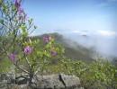 На горе Янковского - туман, нормальная приморская погода...
