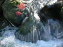 Маленький водопад. Р.Алимовка.