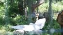 В зоопарке-Садгород