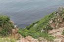 Вид на бухту Шипалова