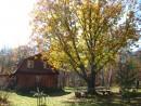 Фото 2004