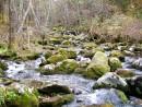 Живописный ручей