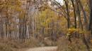 Осень. Приморье. Озеро Черепашье. Бухта Муравьиная