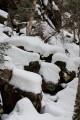 Камни. Шкотовское плато. Шкотовский район.