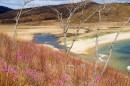 Речка по которой проходит граница заповедника