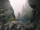 В скалах острова Сибирякова.