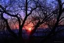 по дороге домой в   Дальнегорск. михайловский раон Приморский край 31 декабря 2011г рассвет