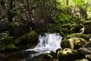 Водопады Беневского ключа