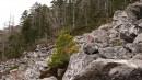Камни огромные