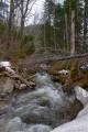 Русло реки Алексеевки