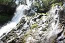 Алексеевский водопад - один из самых завораживающих и красивых водопадов Южного Приморья, он расположен на Партизанском хребте, на северном склоне горы Лысая. Находится на высоте 800 метров над уровнем моря. Высота водопада составляет около 14 метров.