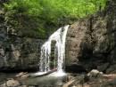 По дороге на Алексеевский водопад. Партизанский хребет, северный склон горы Лысая. 800 метров над уровнем моря.