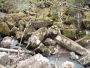 У водопада Горбатый. Камни правильных геометрических форм. Шкотовское плато.