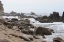 Камни и лагуны бухты Триозерье. Поселок Врангель. Лазовский район.