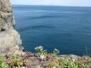 Вид с мыса Гамова. Полуостров Гамова. Хасанский район.