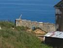 Кусочек стены в районе маяка. Маяк Гамова. Полуостров Гамова. Хасанский район.