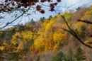 Золотая осень. Склоны водопада.