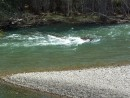 Практически перекат посреди реки.