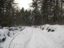 таежная дорога