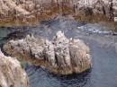 Вид на остров Петрова с верху. Лазовский заповедник. Лазовский район