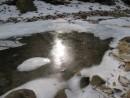 солнечный зайчик пришел на водопой