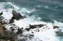 Скала и море