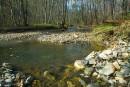 Весна на притоке реки Тигровой