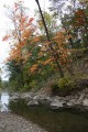 Октябрь 2010г. р. Грязная. Район села Кравцовка, Хасанский район.