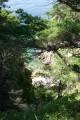 и вода зеленая